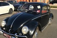 New used volkswagen beetle sedan cars for sale in australia 1959 volkswagen beetle 1200 manual fandeluxe Gallery