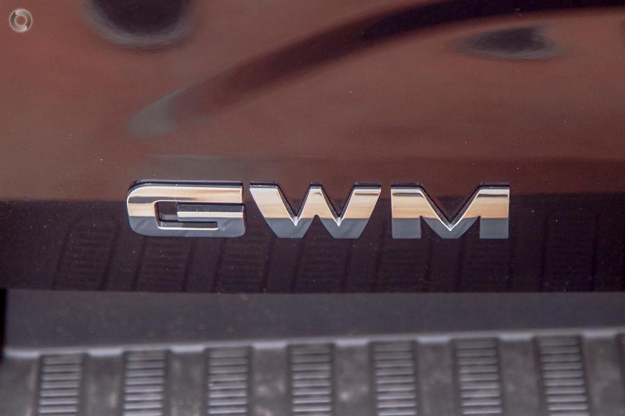 2021 GWM Ute Cannon NPW